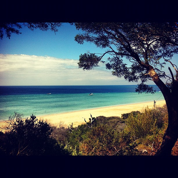 Portsea beach bathing fun