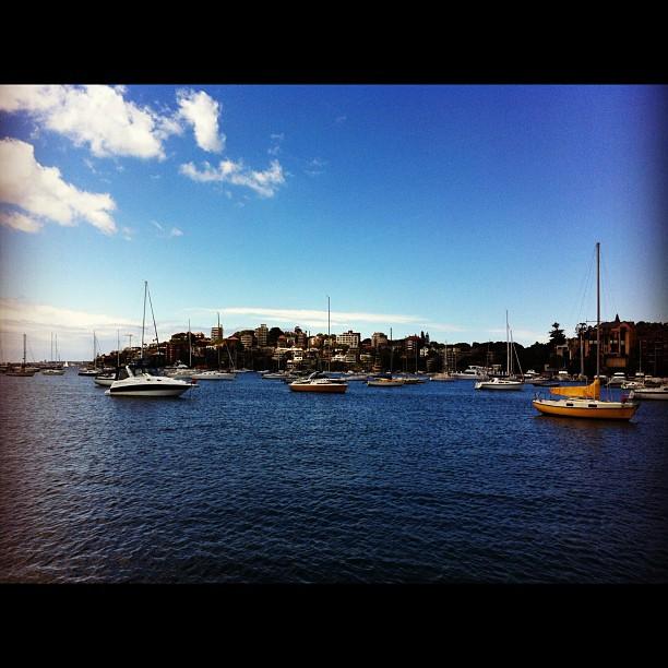 Double bay, Sydney