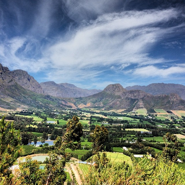 Looking over the winelands